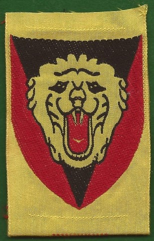 11 Belgium 2nd Infantry Division (Silk)