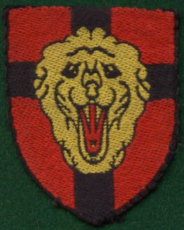 14 Belgium 4th Infantry Division (Silk)