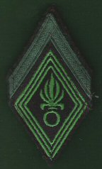 Rank_All_Units_Legionnaire_1er__Classe.jpg